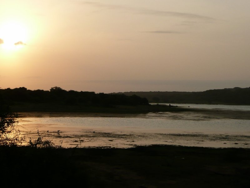 Sunset over Yala National Park, Sri Lanka, Sri Lanka