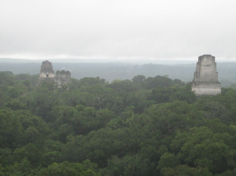 Looking out over the Maya Ruins, Tikal, Arenal Guatemala