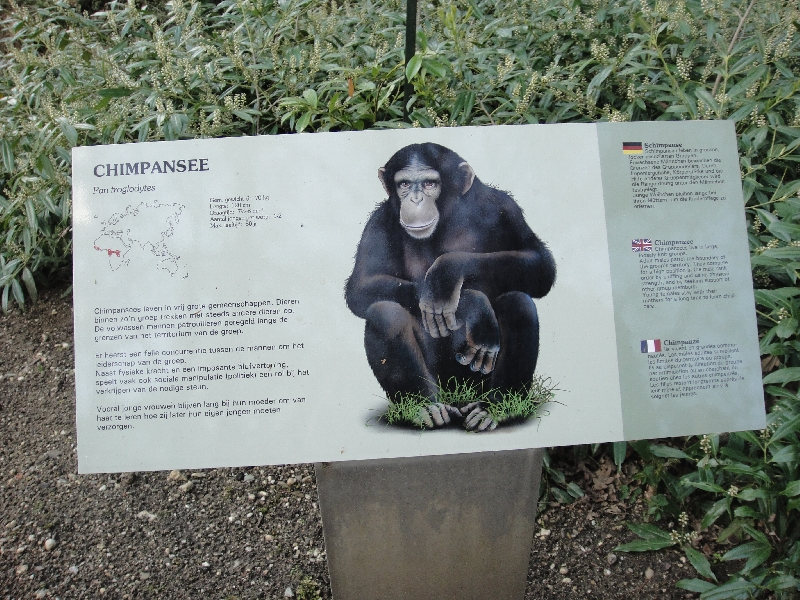 Pictures of the Arnhem Zoo Holland Netherlands Picture gallery