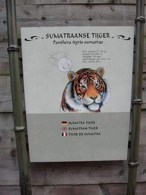 Photo Pictures of the Arnhem Zoo Holland departed