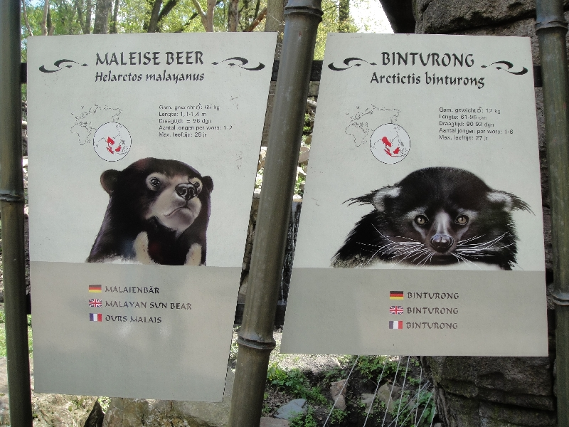 Photo Pictures of the Arnhem Zoo Holland Tickets