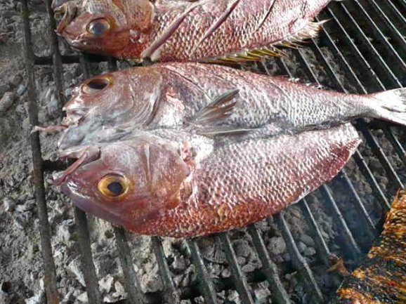 Grilled fish on the BBQ in Dili, Timor, East Timor