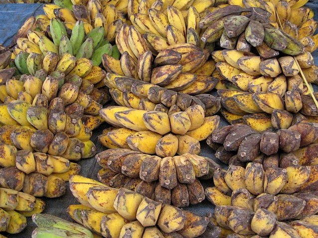 Banana's in Dili on the market, Dili East Timor