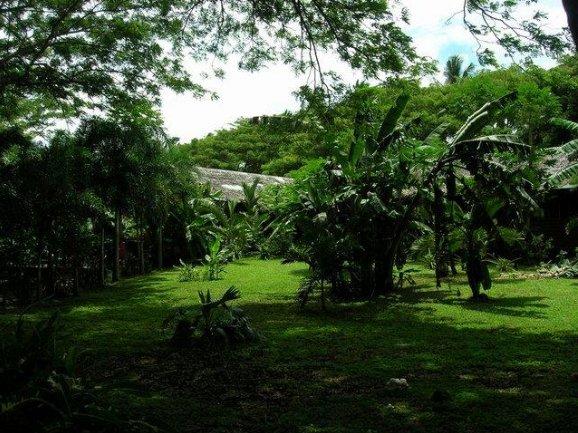 Apia Samoa Holiday Tips