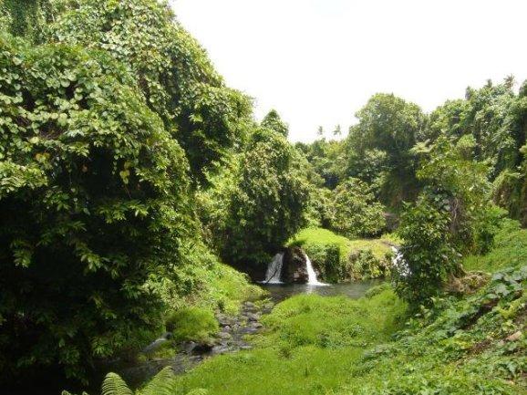 Samoa trip from Upolu to Savaii island Apia Blog Photos