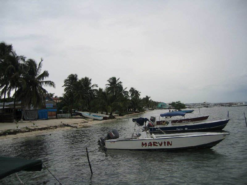From Belize City to Caye Caulker Island Trip Experience
