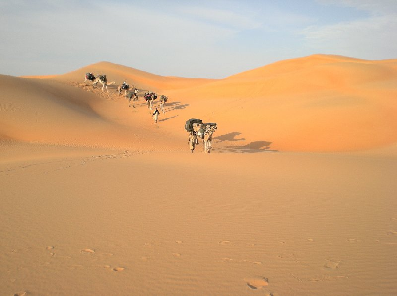 Desert camel ride to the Terjit Oasis Mauritania Holiday Sharing