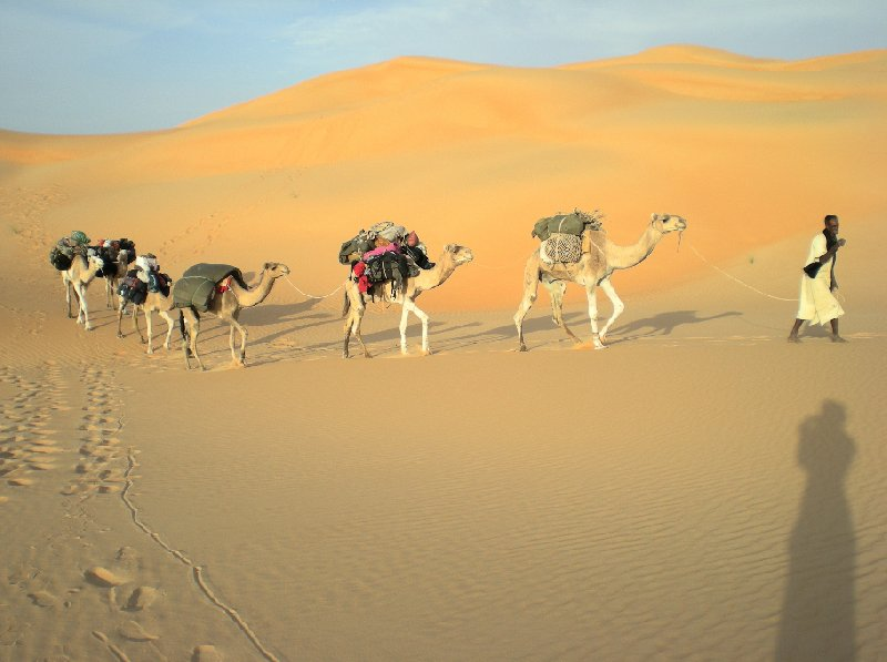 Desert camel ride to the Terjit Oasis Mauritania Blog Review