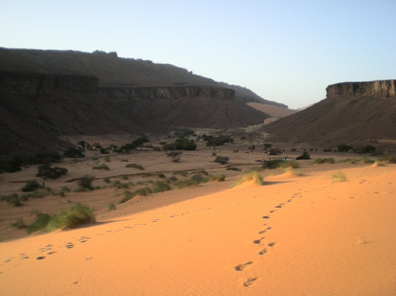Terjit Mauritania Holiday Adventure