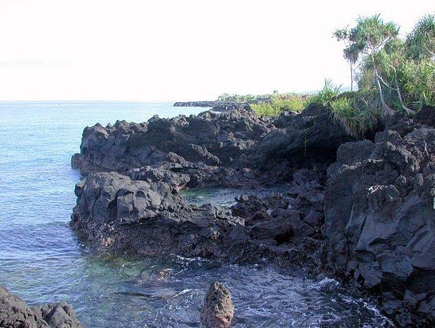Photo Le Moroni Hotel Comoros turtles