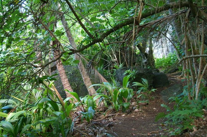 Pitcairn Island photos and travel tips Adamstown Pitcairn Islands Travel Blog