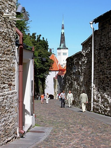 Tallinn Estonia pictures Vacation Photos