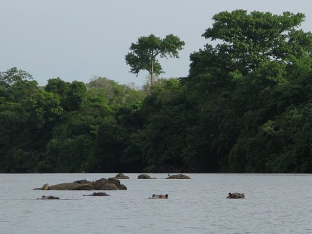 Outamba-kilimi national park Kamakwie Sierra Leone Trip Review