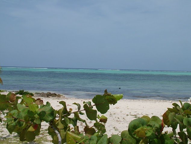 George Town Cayman Islands Holiday Sharing