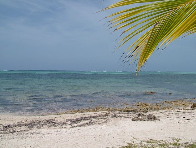 Photo Cayman Islands all inclusive honeymoon enjoying