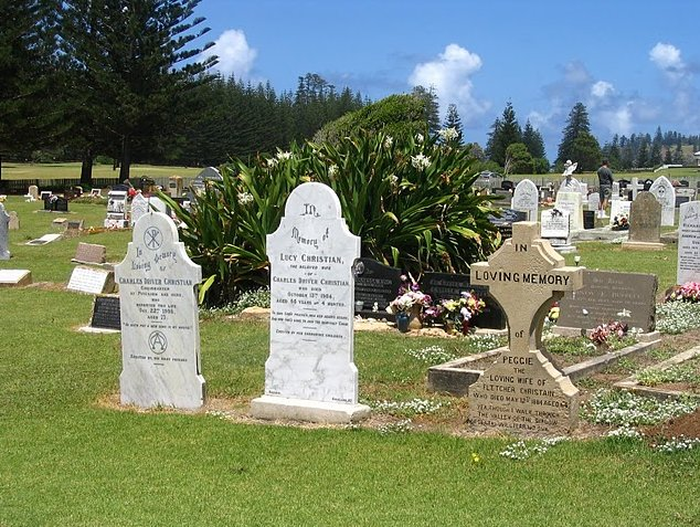Norfolk Island pine tree tours Kingston Trip Photographs