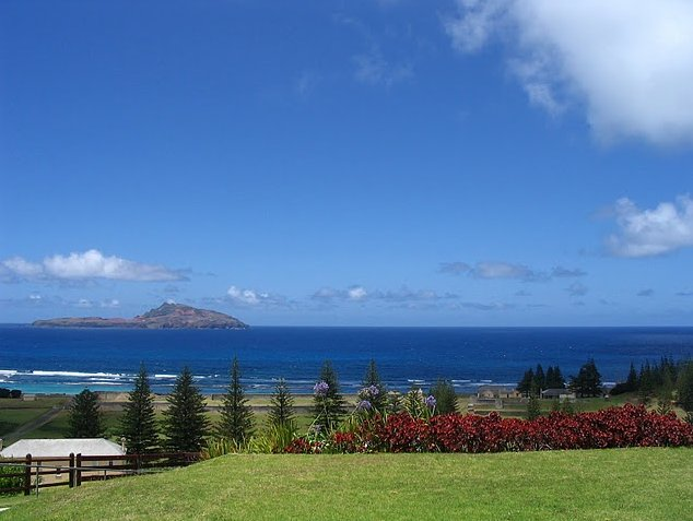 Norfolk Island pine tree tours Kingston Travel Review