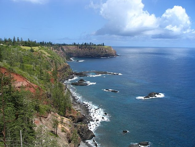 Norfolk Island pine tree tours Kingston Trip Review