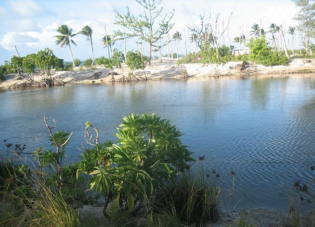 Photo Kiribati Island pictures seperated