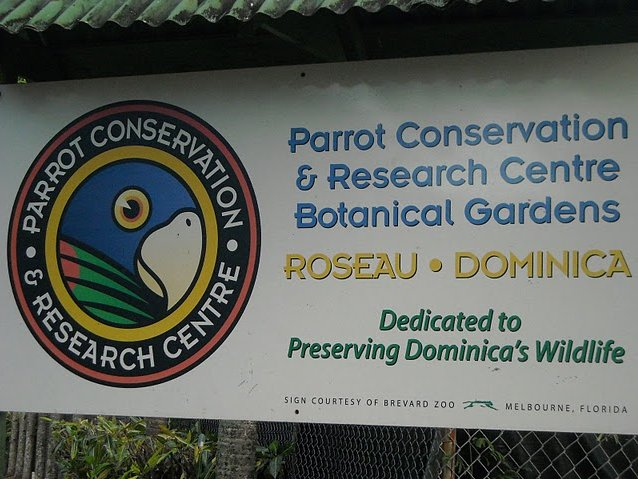 Photo Roseau Dominica Botanical Gardens Gardens
