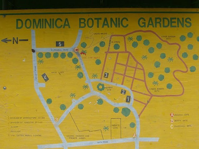 Photo Roseau Dominica Botanical Gardens visiting