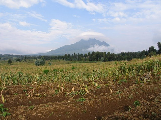 Photo Rwanda Volcanoes National Park nearest
