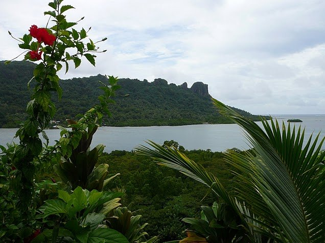 Pohnpei Micronesia Photos