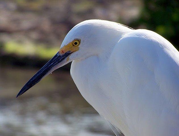 Florida Keys United States Blog Photography