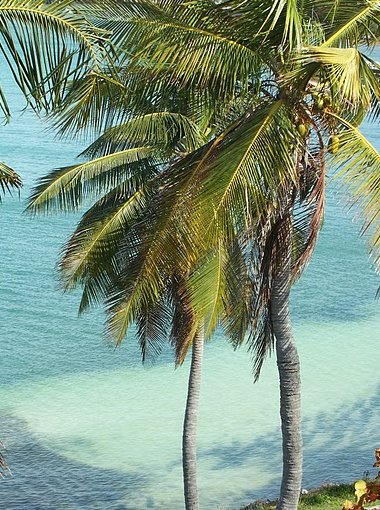 Romantic getaway in Florida Florida Keys United States Diary Information