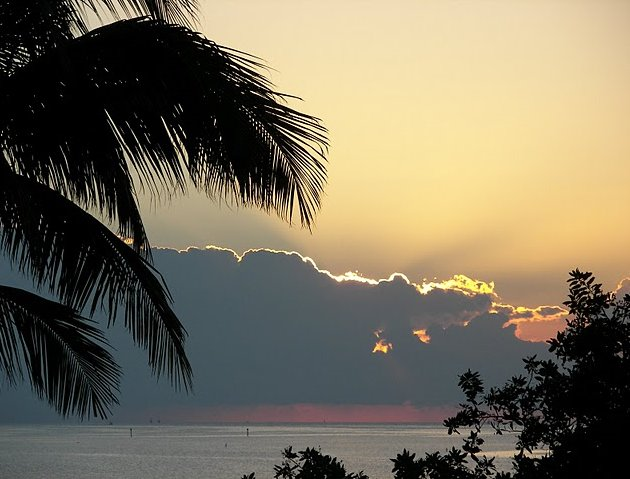 Photo Romantic getaway in Florida beautiful