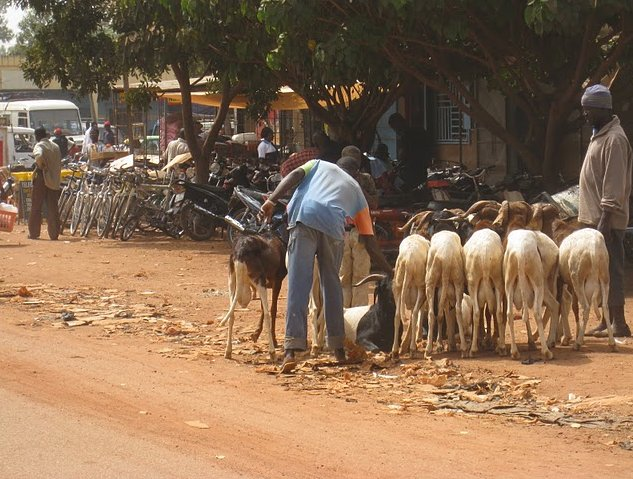 Banfora Burkina Faso Picture gallery