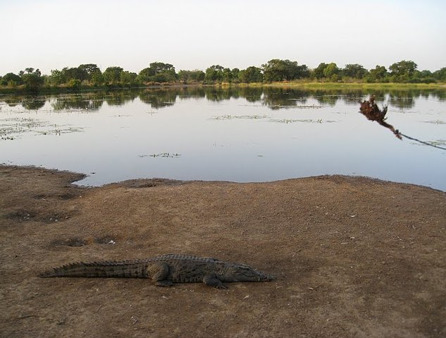 Burkina Faso Africa Banfora Vacation Information