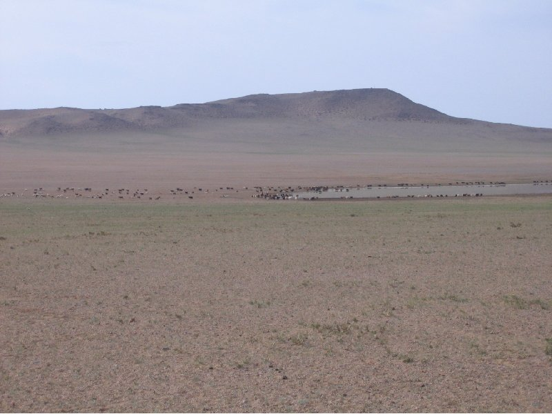 The Gobi Desert in Mongolia Kharkhorin Travel Blog