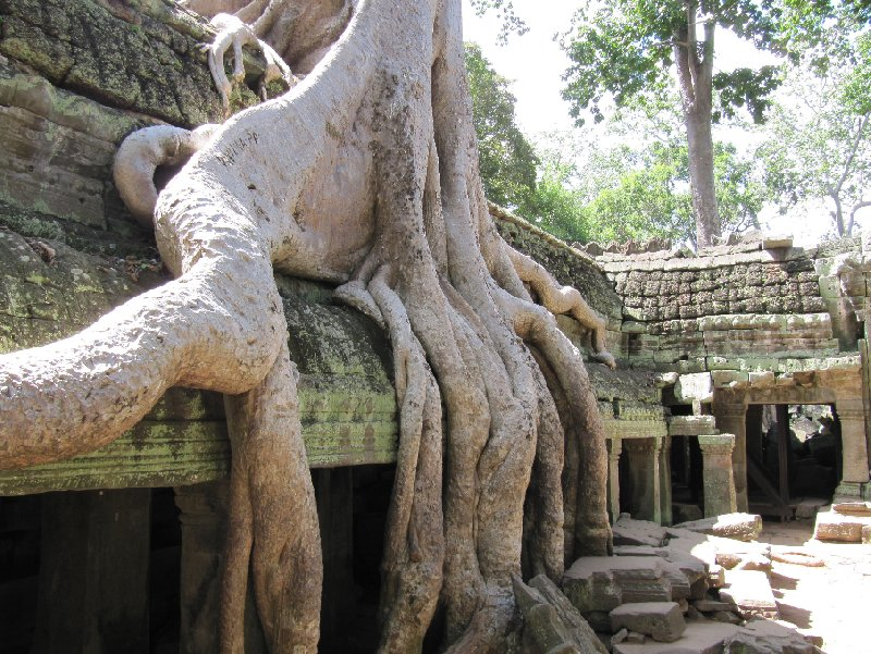 Siem Reap Cambodia Travel Guide