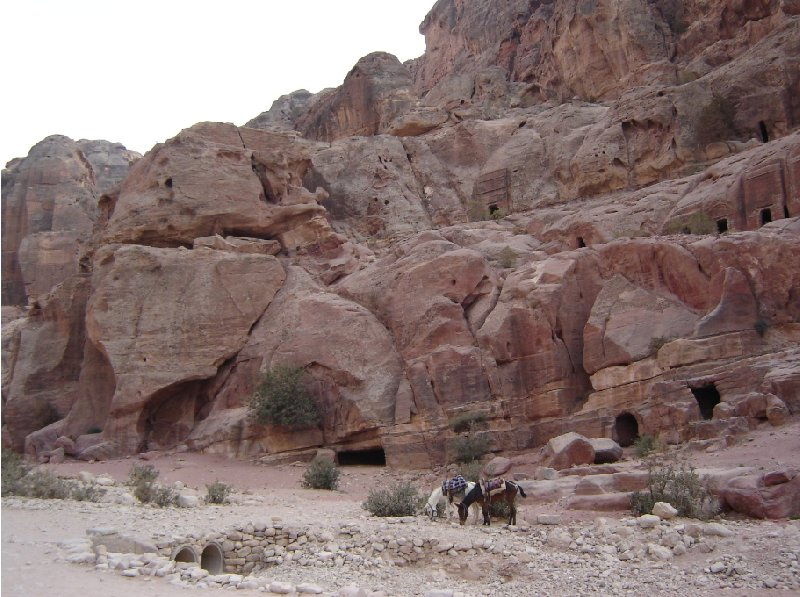 Petra and Wadi Rum tours Jordan Travel Blogs