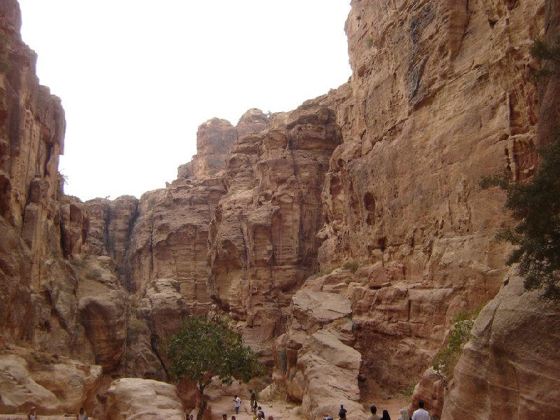 Petra and Wadi Rum tours Jordan Review Gallery