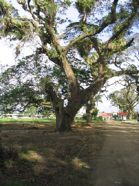 The capital of Suriname Paramaribo Trip Guide