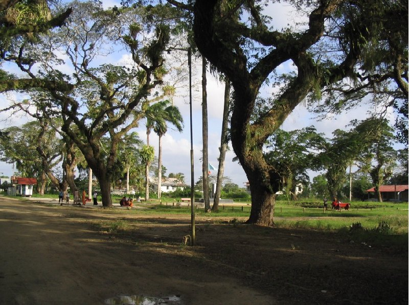 The capital of Suriname Paramaribo Diary Photography