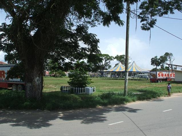 Georgetown's Botanical Gardens Guyana Travel Experience