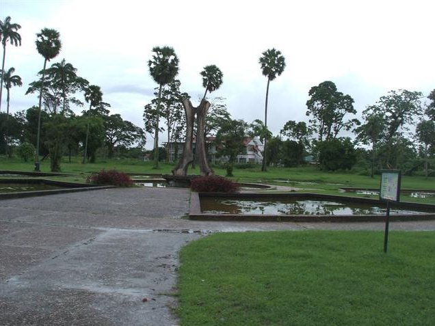 Georgetown's Botanical Gardens Guyana Diary Photos