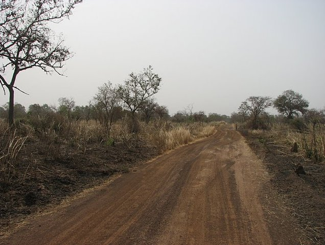 Benin Wildlife Safari Tour Tanguieta Travel Tips