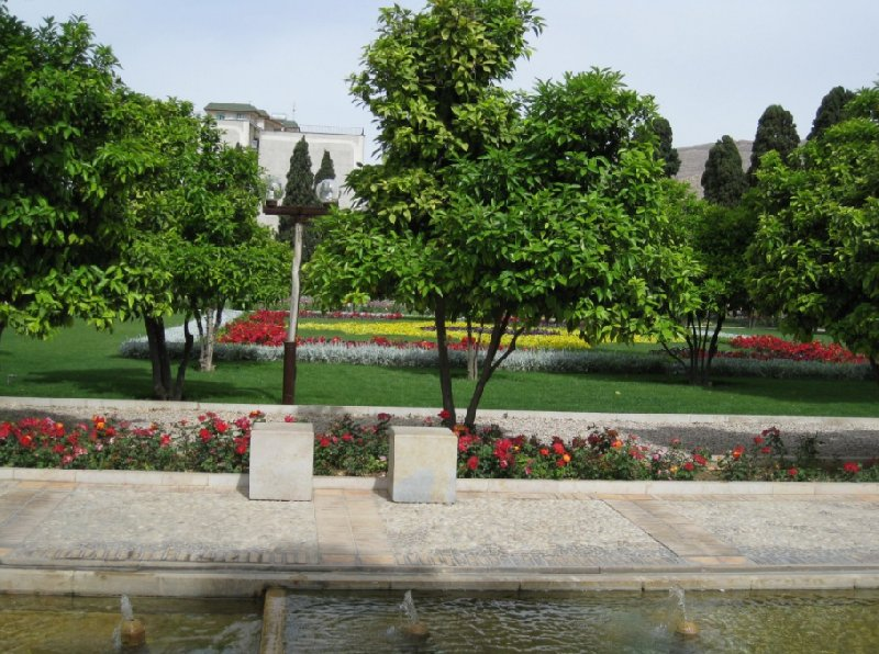 Things to do in Shiraz Iran Trip Pictures