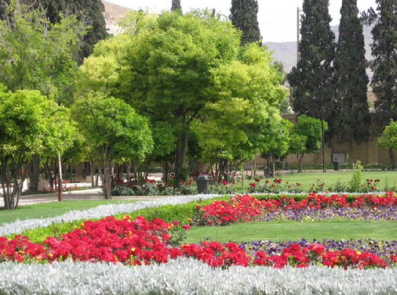 Shiraz Iran Vacation Picture