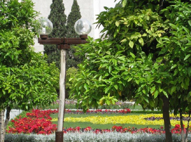 Photo Things to do in Shiraz Iran Persians