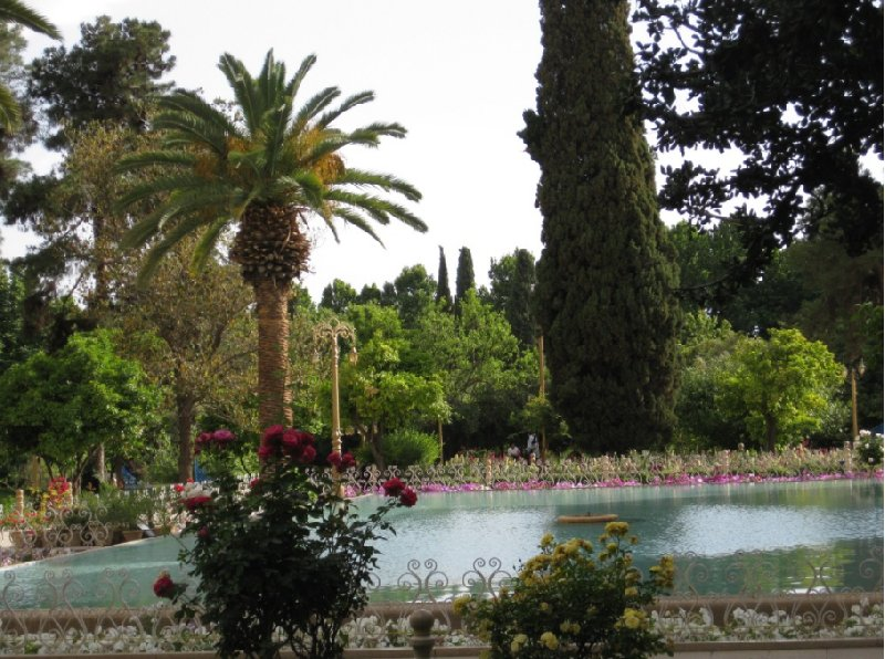 Things to do in Shiraz Iran Blog Photos