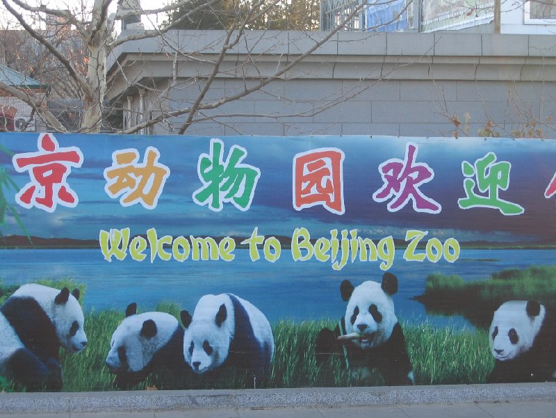 Things to do in Beijing China Trip Vacation