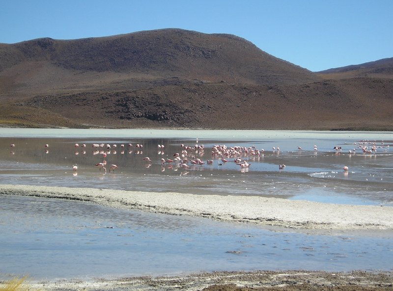 Uyuni Salt Tour Bolivia Diary Information