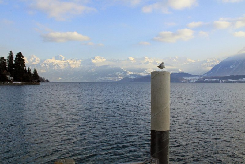 Thun Switzerland Diary Photos