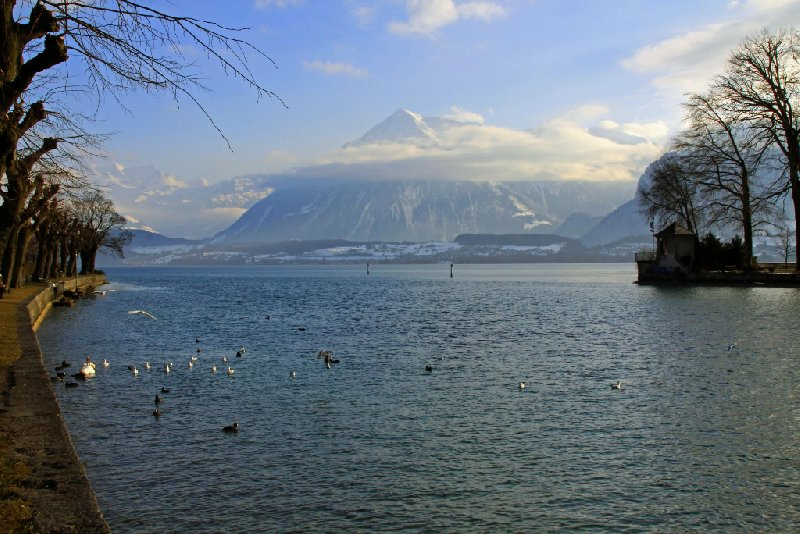 Thun Switzerland Album Photographs