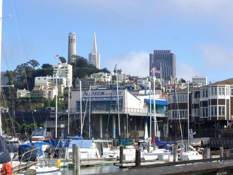 San Francisco United States Diary